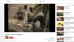 hyenene