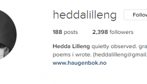 hedda following