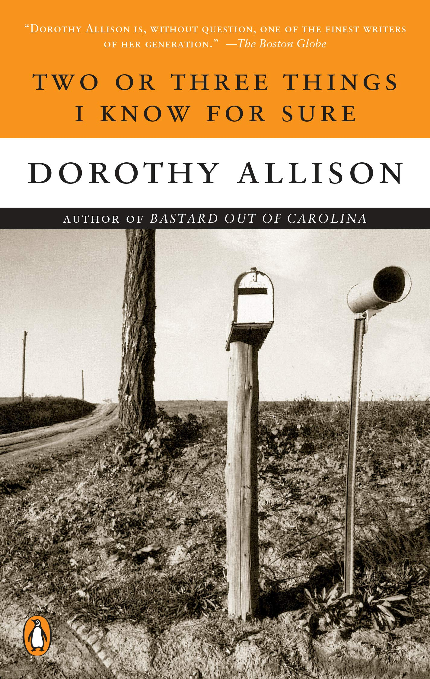 Dorothy Allison, Two or Three Things I Know for Sure