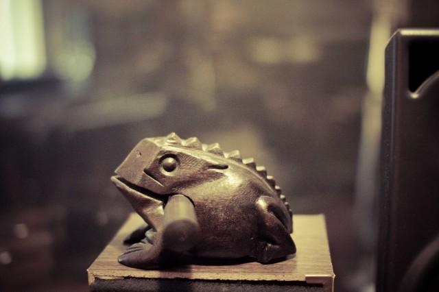 Frosk foto Frank Michaelsen