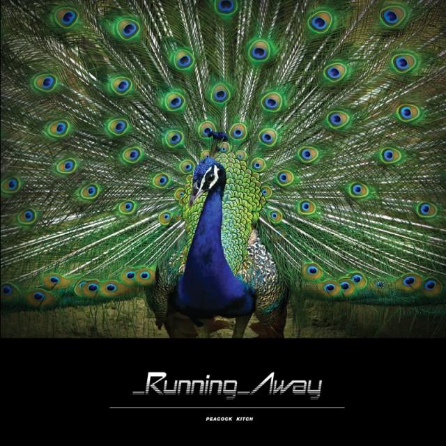 Running_Away_-_Peacock_Kitch