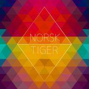 Norsk Tiger albumcover - Kjærlighetsarkitekter - design av Ingis