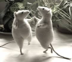 dansende mus